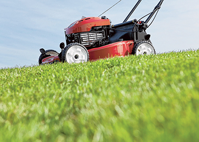Mid summer can be tough on lawns and gardens