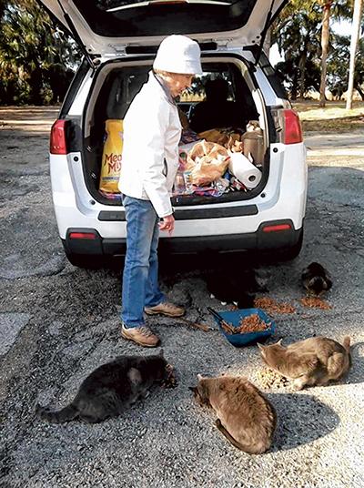 Elder cat caregiver retires from volunteer work