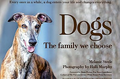 """Dogs"" a photographic love letter to canine family"