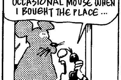 When selling, must you disclose a mouse in the house?