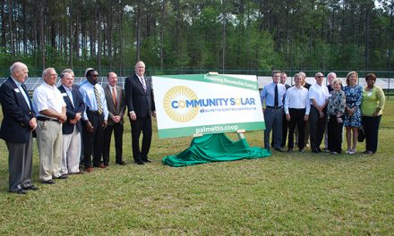 Palmetto Electric begins harvesting solar power