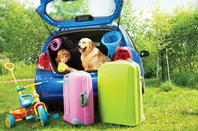 Plan ahead for summer travel with your dog