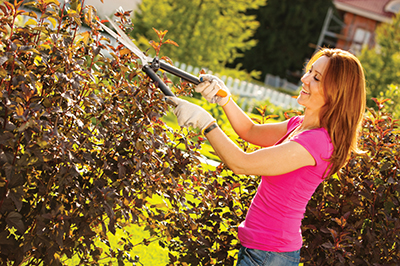 Spring is blooming! How to help your garden along