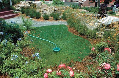 Time to focus on taking good care of the lawn
