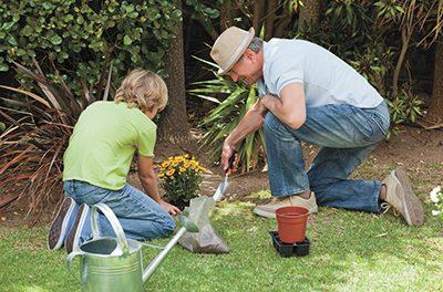 Plan ahead for spring color with bulbs, perennials, shrubs