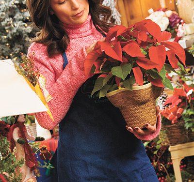 Holiday garden chores help prepare landscape for spring