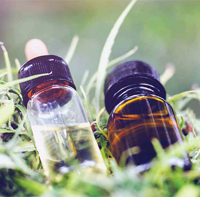 Start learning about CBD products by knowing the facts