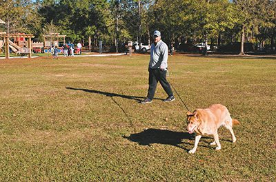 Kids, dogs, strollers find room to roam in Field of Dreams