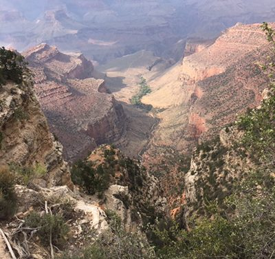 Tour of western national parks proved delightful, educational