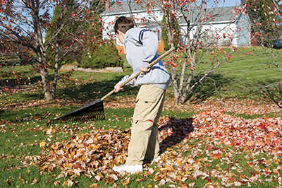 Cool weather checklist for lawn and garden chores