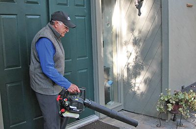 Over-use of leaf blowers, pesticides harmful to environment