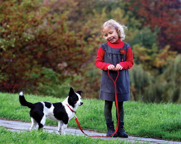 Dogs of all sizes, breeds need to walk, explore their world