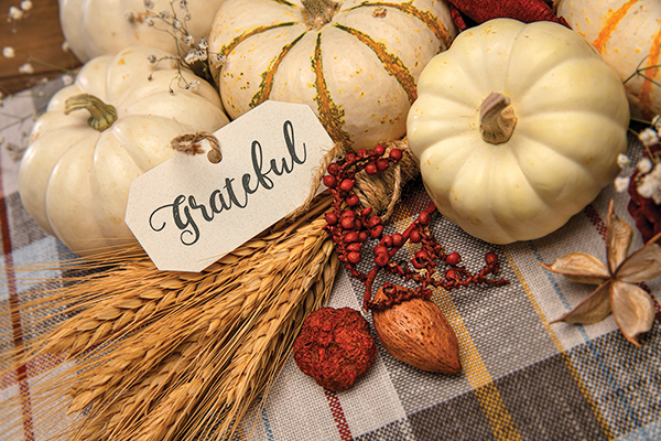 Find joy in giving thanks in this unusual season