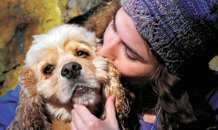 Dogs must practice good manners when greeting guests