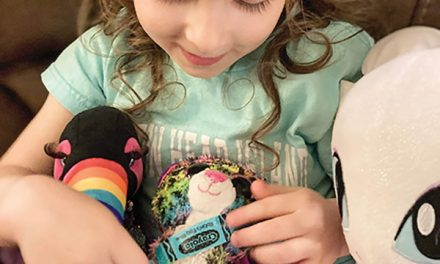 Young 'doctor' creates stuffed animal 'hospital' in her home
