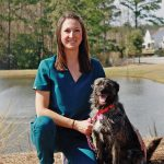 Mobile vet takes the idea of house calls to a whole new level