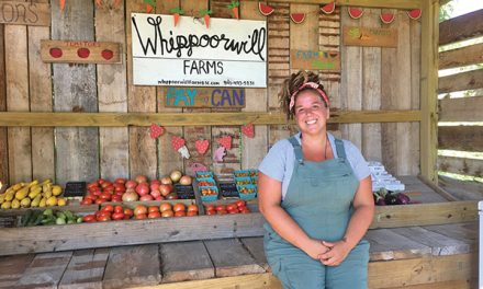 On Whippoorwill farm, regenerated forest is primary crop
