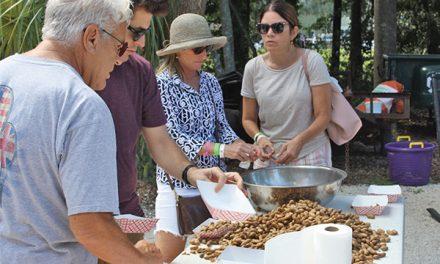 10th annual Boiled Peanut Festival set for Sept. 11