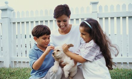 Getting new puppy means adjustments for humans and dogs